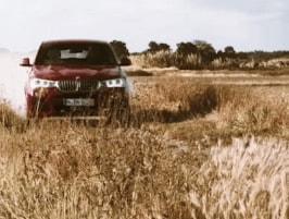 Vorschaubild zu BMW X4